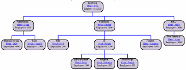 Hierarchies In The Organisation