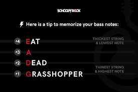 Bass Tuning Chart School Of Rock Beginners Guide To Tuning A Bass Guitar