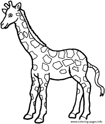 Small Picture Collection Coloring Pages Of Zoo Animals For Preschool Pictures