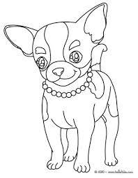 Chi Coloring Chihuahua Hond Tekeningen Kleurplaten En Hond Kunst