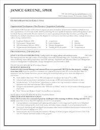 Auditor Job Description Resumes Job Description Of Sales Associate For Resume