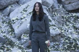 does jennifer lawrence play the same character in winter s bone does jennifer lawrence play the same character in winter s bone and the hunger games screenprism