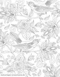 ぬりえのページの鳥とバラ 無料の着色ページをダウンロード