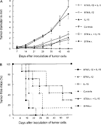theutic effects of b78 il 12 vaccine in bination with il 15 mice were injected into the footpad of the right hind limb with 2 10 5 b78 h1 melanoma