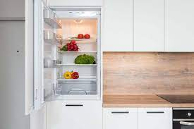 Buzdolabının icadı, Buzdolabını Kim Buldu? - Zuuh