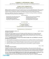 Executive Administrative Assistant Resume Enchanting Administrative Assistant Resume Examples 44 Resume