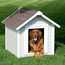porch potty diy dog house dog house urban dog houses