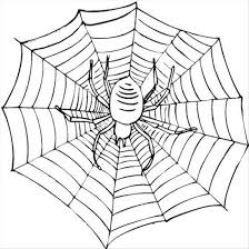 Small Picture Halloween Spider Web Coloring Pages Halloween Fun Party