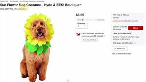 Some Adorable And Scary Halloween Costume Ideas For Your Dog