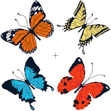 Butterfly Patterns Custom Butterflies Free Cross Stitch Pattern Better Cross Stitch