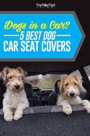 top best car seat covers for dogs
