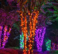 outdoor halloween lighting. Halloween String Lights Outdoor Inspirational Lighting