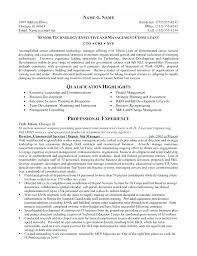 Cio Resume Examples Executive Resume Samples Examples Of Executive
