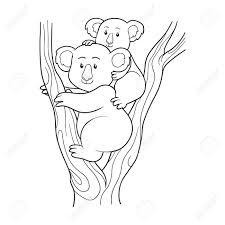 coloring book koala stock vector 37580196