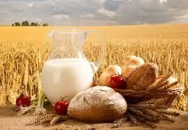 Картинки по запросу фото з днем сільського господарства