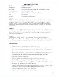 Resume Summary Examples Entry Level Unique Software Engineer Resume