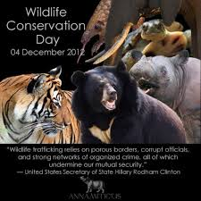 wildlife and conservation essay speech composition paragraph wildlife ecosystem is self sufficient to support each other s need when uninterrupted they are linked by a natural food chain and the biodiversity is