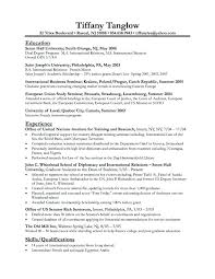 Free Example Resume Best Sample Resume For Employment Together With Resume Layout Sample