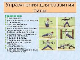 Физические упрожнения на силу Древний сайт отборных галерей Дипломная работа развитие физических качеств детей