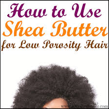 shea er and low porosity hair