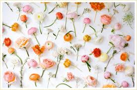 if you ve attended a wedding recently chances are that you saw a flower wall or two this trend is quickly sweeping the wedding world
