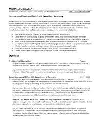 Pleasant Resume Examples Executive Director Non Profit With Non