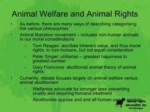 animal welfare essay thesis website design professional essay animal welfare essay
