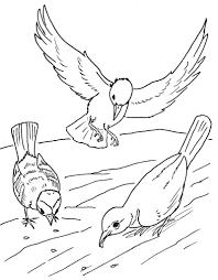 119 Dessins De Coloriage Oiseau Imprimer Sur Laguerche Com Page 6