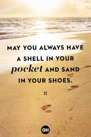 sea shell quotes 30 best beach quotes sayings and quotes about the beach