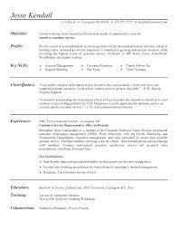 Resume Objective Ideas Sample Resume Customer Service La Free Resume