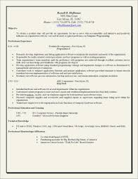 Work Objective Resume Social Work Resume Skills Samples Business Document 11