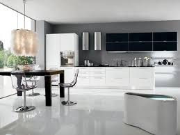 White Modern Kitchen Black And White Modern Kitchen Home Design And Decorating
