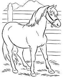 Small Picture Horseland Horse Coloring Pages Coloring Coloring Pages