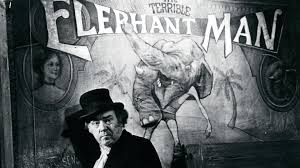 the elephant man essay david lynch s the elephant man alfred eaker  elephant man essay the elephant man essay