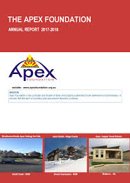 Financial Report Cover Page Annual Report Annual Financial Statements Apex Foundation Limited