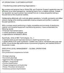 resume professional summary example resume overview examples