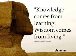 Knowledge Quotes New Image Result For Knowledge Quotes Knowledge Pinterest Knowledge