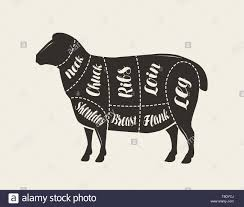 Cut Of Meat Lamb Poster Butcher Diagram And Scheme Vector