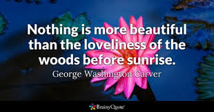 Beautiful Sunrise Scenery With Quotes Best Of Sunrise Quotes BrainyQuote