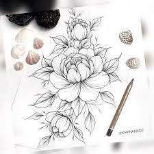 пин от пользователя Arina Kožurkina на доске цветы пионы