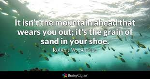 Quotes About Shoes And Friendship Unique Sand Quotes BrainyQuote