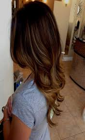 Hairstyles Chestnut Brown Hair Color Chart Most Inspiring