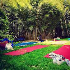 bamboo garden yoga. Fine Yoga These Workshops Are A Series Of Very Special Dru Yoga Workshop At Bambusy  Garden I Will Be Sharing More Depth Into How To Balance Your Energy Using  Intended Bamboo Garden