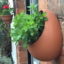 egg wall pot small terracotta uk