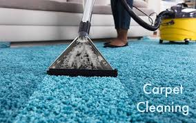 Carpet Cleaning Services in Mumbai, Dadar by Rashtriya Chemical & Herbal  Pest Control Service | ID: 21781020155