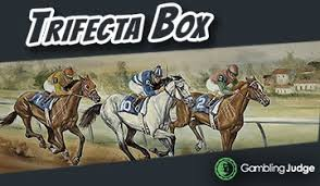 Trifecta Box Trifecta Box Betting Costs And Payouts