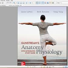 anatomy and physiology study notes body anatomy anatomy and physiology essay do write my paper