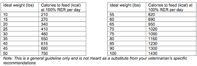 Cattle Dog Weight Chart High Quality Australian Cattle Dog Weight Chart 2019