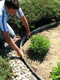aluminum landscape edging man bending down in garden adjusting rustproof around plants calgary aluminum landscape edging
