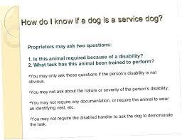 Service Animal Doctors Note Doctors Note Ontario Psychepow Co